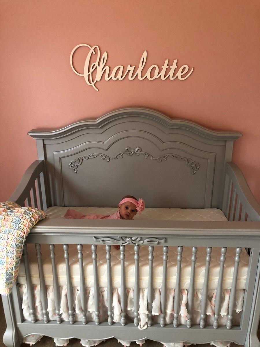 Evolur Aurora Crib Nichole Kotarski Charlotte Nursery