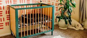 Dream On Me Lucas Mini Crib slightlytiredbailey